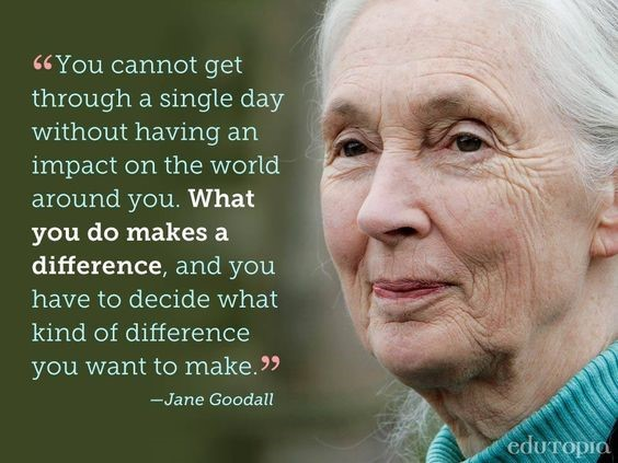 jane-goodall-quote